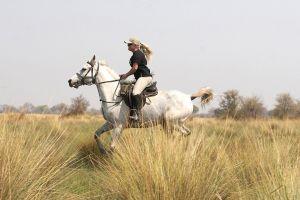 Riding Zulu